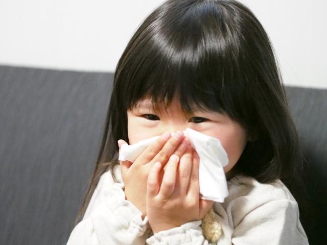 花粉症が辛い時期。換気はどうする?